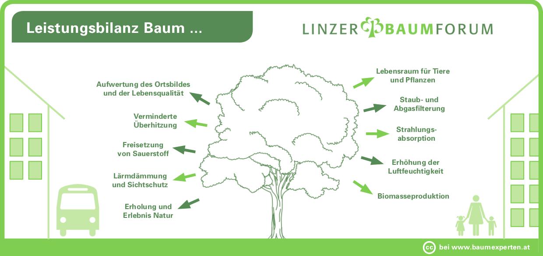 linzer baumforum