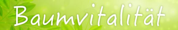 Baumvitalität - Thema des 23. Linzer Baumforum