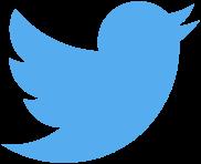 Twitter_bird_logo_2012